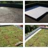 Aménagement et entretien de toiture végétalisée