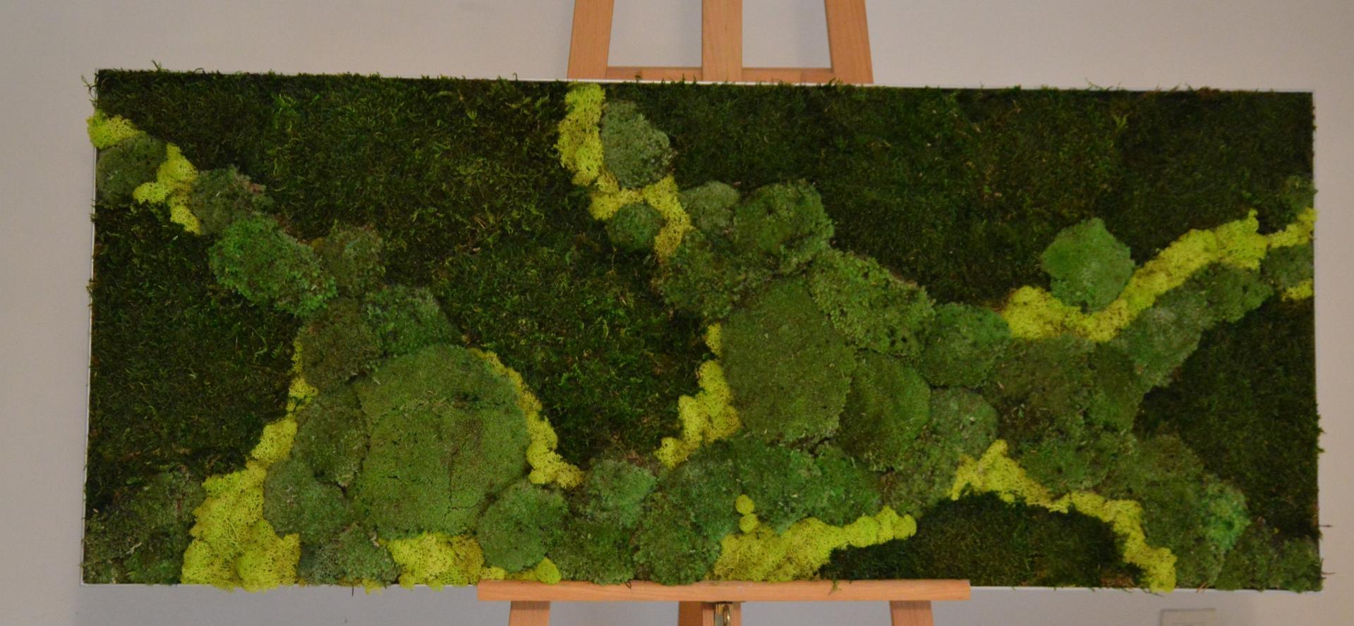 Tableau mousse en lichen