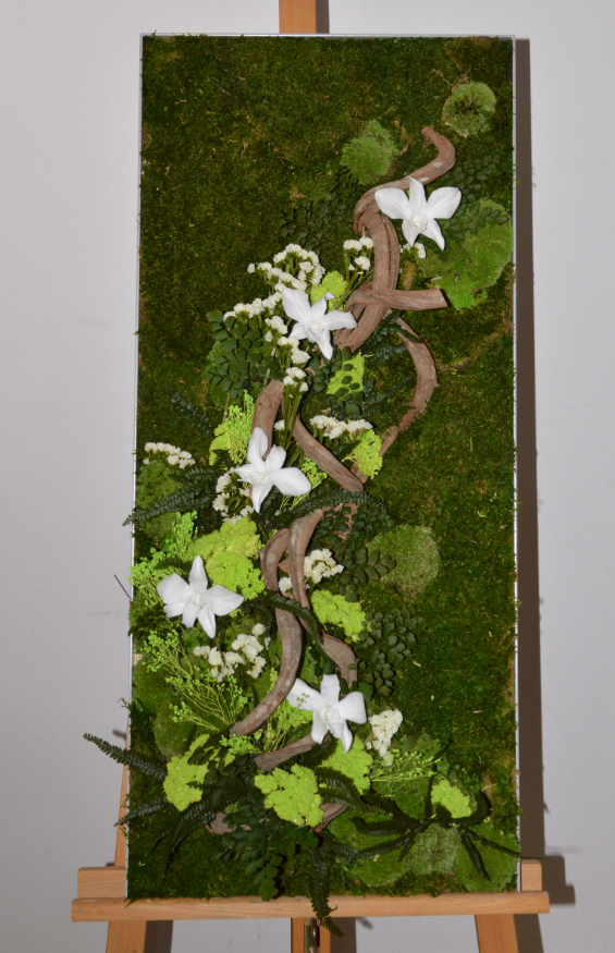 tableau mousse et orchidées